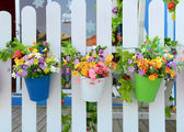 Hanging Flower Pots with fence — Stock Photo