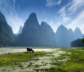 Landscape in Yangshuo Guilin, China — Stock Photo