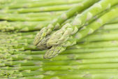 Fresh asparagus on white — Stok fotoğraf