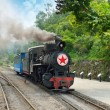 Narrow gauge railway,China's Sichuan province. — Stock Photo