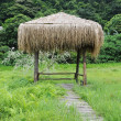 Stock Photo: Bungalow in grass