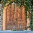 Door and a wall covered with ivy — Stock Photo #34109711