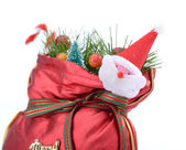 Colorful gift bag with ribbon and bow. — Stock Photo