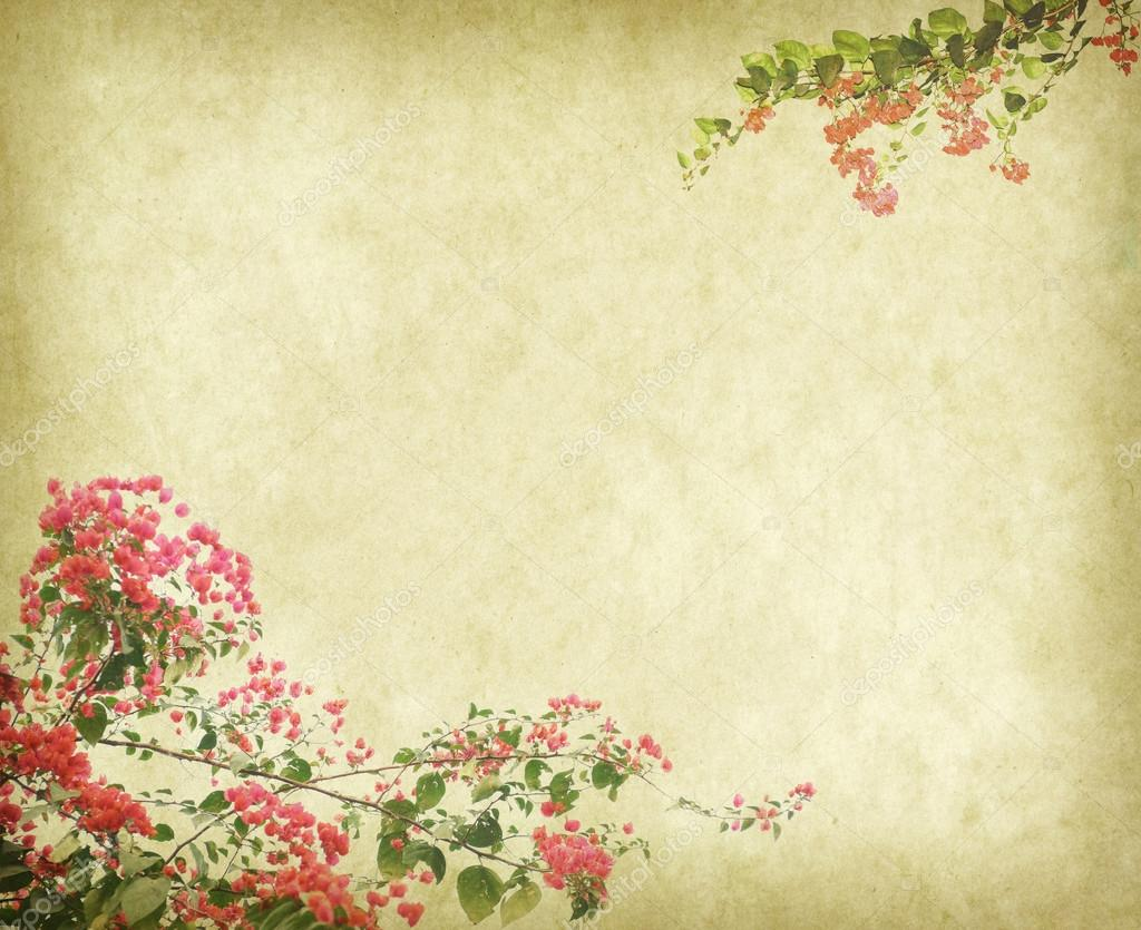 Fondo De Fondos Vintage Con Flores De Buganvilla