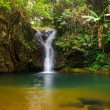 Stock Photo: Rain forest waterfall
