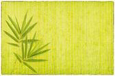 Bambù su vecchi grunge di carta trama — Foto Stock