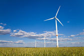 Windmills in a field — Stock Photo