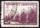 Postage stamp Argentina 1936 Field of Sugar Cane — Stock Photo