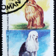 Postage stamp Oman 1972 Cat and Dog — Stock Photo