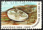 Znaczek kuba 1964 meduzy, listkowata cassiopea — Zdjęcie stockowe
