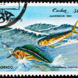 Postage stamp Cuba 1981 Common Dolphinfish, Dorado — Stock Photo