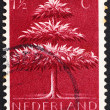 Postage stamp Netherlands 1943 Triple-crown Tree — Stock Photo