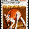 Postage stamp Australia 1971 Kangaroo - Stock Photo