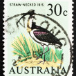 Postage stamp Australia 1966 Straw-necked Ibis - Stock Photo