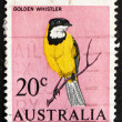 Postage stamp Australia 1966 Golden Whistler - Stock Photo