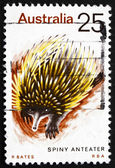 Postage stamp Australia 1974 Spiny Anteater, Echidna — Stock Photo