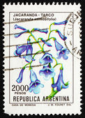 Postage stamp Argentina 1982 Blue Jacaranda, sub-tropical Tree — Stock Photo