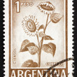Stock Photo: Postage stamp Argentin1970 Sunflower, Plant