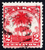 Postage stamp Cuba 1899 Royal Palms, National Tree of Cuba — Stock Photo