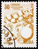 Frimärke kuba 1982 färsk frukt, kubanska export — Stockfoto