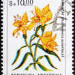 Royalty-Free Stock Photo: Postage stamp Argentina 1983 Peruvian Lily, Alstroemeria Auranti