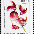 Postage stamp Argentina 1982 Cockspur Coral Tree, Erythrina Cris — Stock Photo