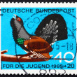 Postage stamp Germany 1965 Capercaillie, Tetrao Urogallus - Stock Photo
