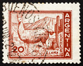 Postage stamp Argentina 1961 Llama — Stock Photo
