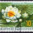 Postage stamp Germany 1957 Water Lily, Aquatic Plant — Stok fotoğraf