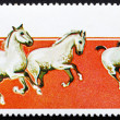 Stock Photo: Postage stamp Umm al-Quwain 1969 Holsteiner Horses
