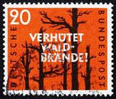 Postage stamp Germany 1958 Prevent Forest Fires — Stock Photo