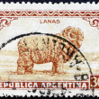 Postage stamp Argentin1936 Merino Sheep, Wool — Stock Photo #12732171