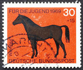 Postage stamp Germany 1969 Hotblood Horse — Stock Photo