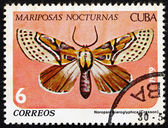 Postage stamp Cuba 1979 Noropsis Hieroglyphica, Butterfly — Stock Photo