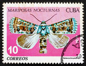 Postage stamp Cuba 1979 Heterochroma, Nocturnal Butterfly — Stock Photo