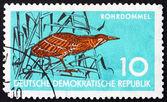 Postage stamp GDR 1959 Bittern, Wading Bird — Stock Photo