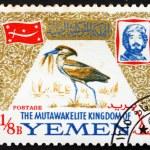 Постер, плакат: Postage stamp Yemen 1965 Scopus Umbretta Bird