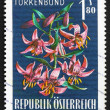 Postage stamp Austria 1966 Turk — Stock Photo