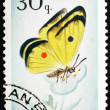 Stock Photo: Postage stamp Portugal 1966 Cloudless Sulphur Butterfly, Colias
