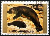 Postage stamp Umm al-Quwain 1972 Seal, Animal — Stock Photo