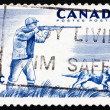 Postage stamp Canada 1957 Hunter and Dog — Stock Photo #15702203