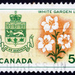 Postage stamp Canada 1964 White Garden Lily, Arms of Quebec — Stock Photo