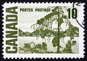 Poštovní známka kanada 1967 jack borovice, tom thomson — Stock fotografie