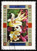 Poštovní známka s um al-quwain 1972 květina, příroda — Stock fotografie