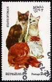 Postage stamp Oman 1973 Cats — Stock Photo