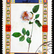 Postage stamp Umm al-Quwain 1972 Rose, Flower — Stock Photo