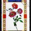 Royalty-Free Stock Photo: Postage stamp Umm al-Quwain 1972 Rose, Flower