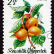 Postage stamp Austria 1966 Apricots, Fruit — Stock Photo