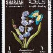 Postage stamp Sharjah 1967 Siberian Squill and Butterfly — Stock Photo