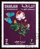 Briefmarke sharjah 1967 rose blume und schmetterling — Stockfoto